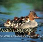 Discipline System Part 1