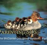 Discipline System Part 2